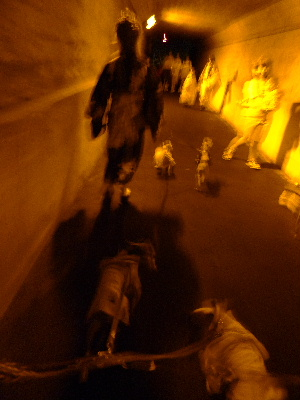 2011_0730ナッキー0095