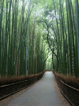 080620京都旅行