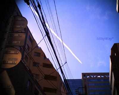 20111014.jpg