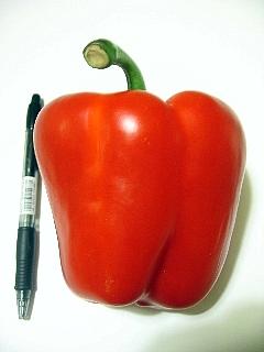 大赤パプリカ