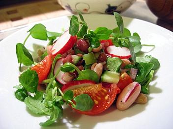 3種の豆とクレソンのサラダ
