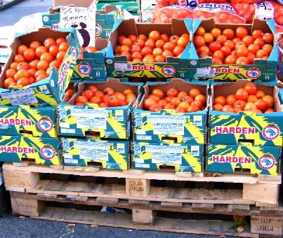 トマト1箱3ポンド