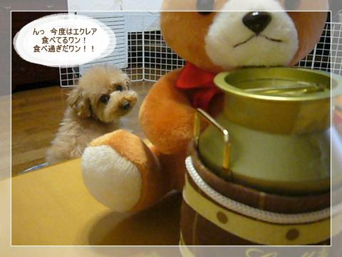 cats_20090218224049.jpg