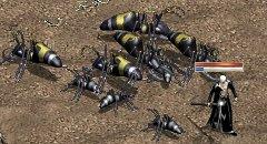 砂漠蟻いっぱい