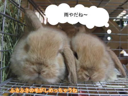 01_20120323170032.jpg
