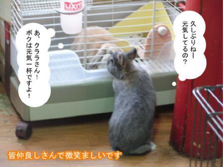 05_20120207163431.jpg