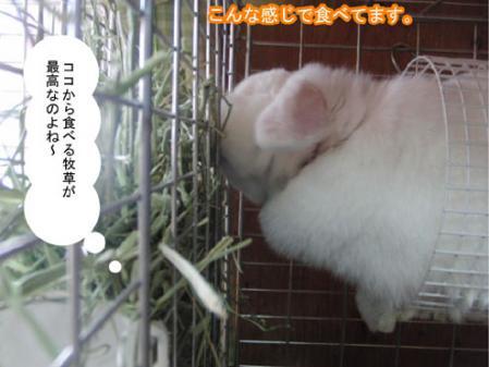 07_20120131170111.jpg
