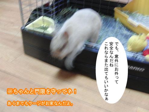 10_20120123182129.jpg