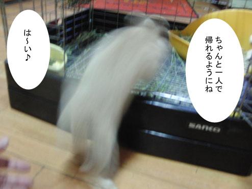 11_20120123182129.jpg