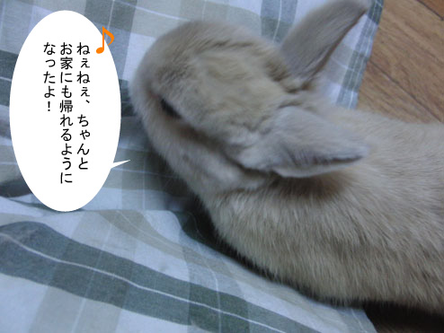12_20120123182129.jpg