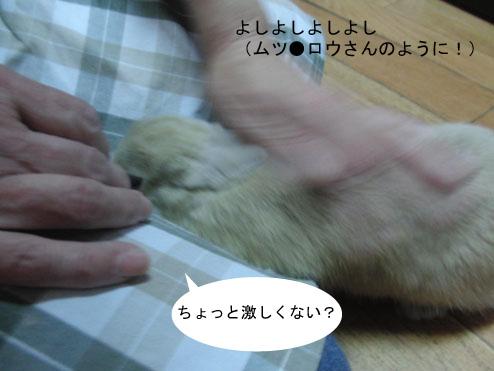 14_20120123182150.jpg