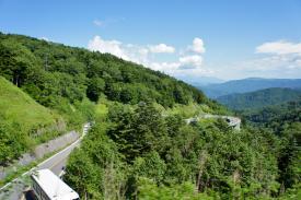Nagano Road