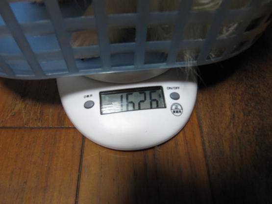 体重 810