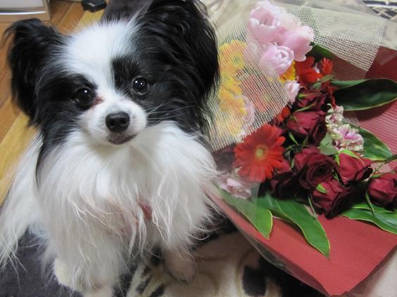 花束とランディ