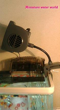 プラティ御殿の冷却ファン~猛暑回避水温対策~⑤