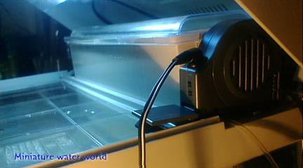 本水槽カルディアアクロス冷却ファン~猛暑回避水温対策~⑦