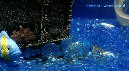 海底の宝石①