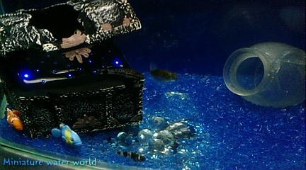 海底の宝石⑤