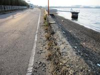 荷内海岸の朽ちた堤防2