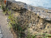 荷内海岸の朽ちた堤防