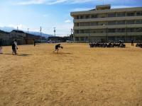 2012.1.17 マンダリンの野球教室3