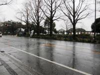 2012.1.20 雪の降る山下公園