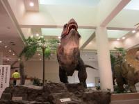 2012.3.24 総合科学博物館 ティラノザウルス1