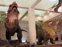 2012.3.24 総合科学博物館 ティラノザウルスとトリケラトプス