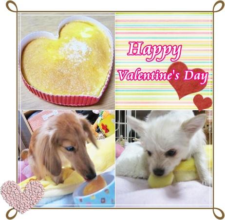 バレンタイン☆2011