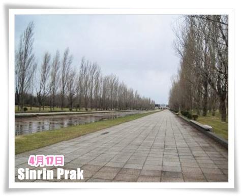 いつもの公園♪