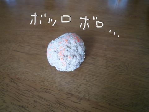 snap_mireiushiwakamairo_20096004048.jpg