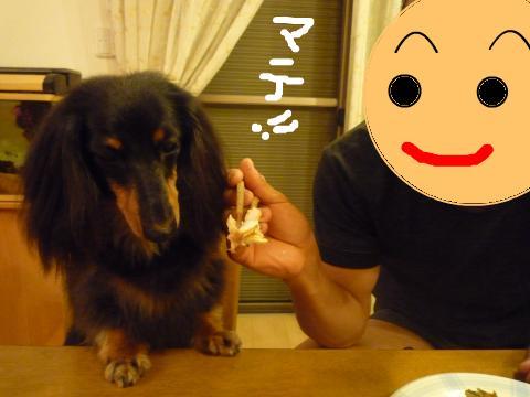 snap_mireiushiwakamairo_20096042054.jpg