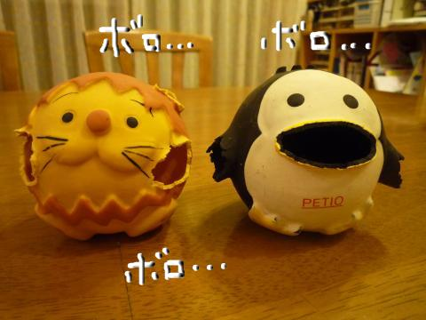 snap_mireiushiwakamairo_20096105024.jpg