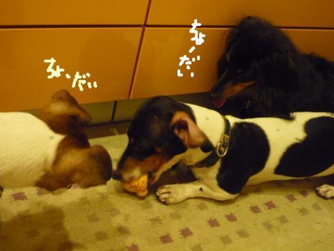 snap_mireiushiwakamairo_2009611235.jpg