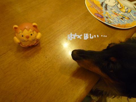 snap_mireiushiwakamairo_2009611630.jpg