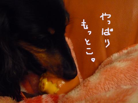 snap_mireiushiwakamairo_20096121118.jpg