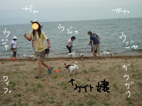 snap_mireiushiwakamairo_20097112239.jpg