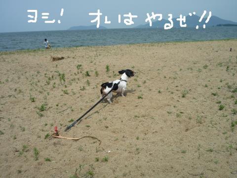 snap_mireiushiwakamairo_200971124357.jpg