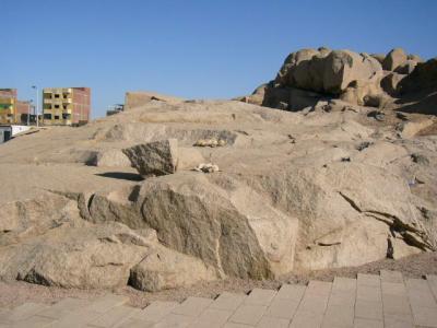 エジプトのワンコ2