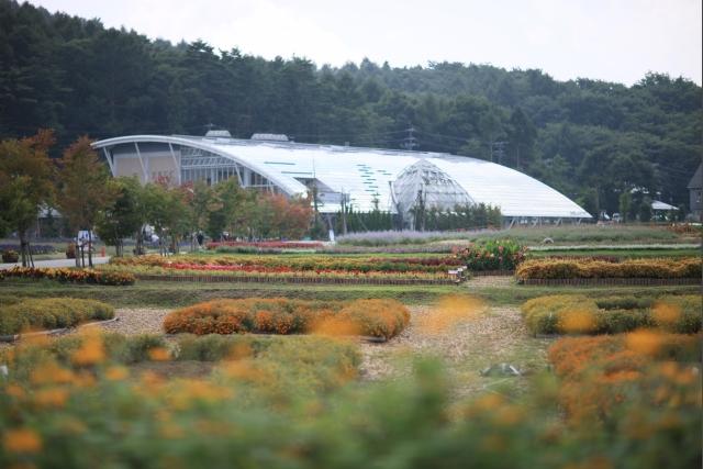 20080907_01_hananomiyako.jpg