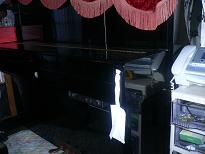 P1120029.jpg