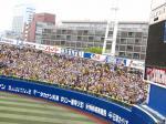 IMG_0154盛り上がる阪神ファン