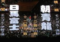 IMG_0205はるまふじ対あさしょうりゅう(16)