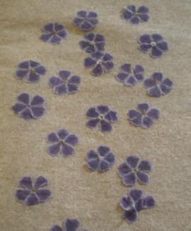 でゅらんたの押し花