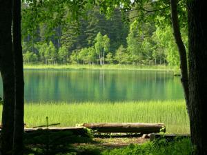 「エメラルドグリーンの湖畔」-足寄町・オンネトーの風景