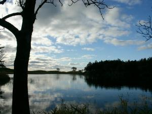 「水と空のハーモニー」 晩秋の知床五湖