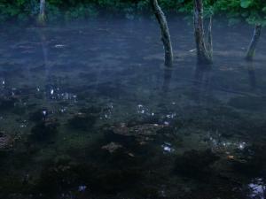 「神の息吹」~夕暮れの神の子池・清里町