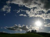 「木と草原と太陽と」~鶴居村の牧場風景