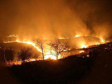第10回秋吉台野火の祭典(夜の山焼き)