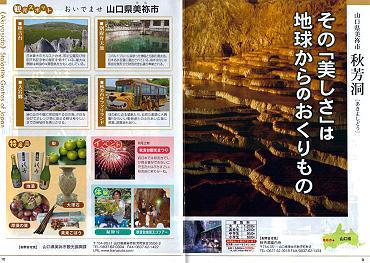 日本鍾乳洞八選:秋芳洞